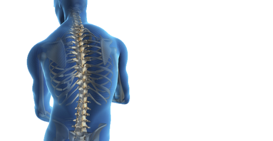 Der starke Rücken (Rehasport)
