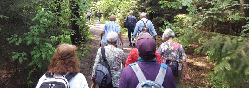 Maiwanderung Seniorensport Veranstaltung Senioren- und Rehasportverein Schönfelder Hochland e.V.