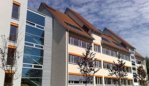 schoenfeld-schule